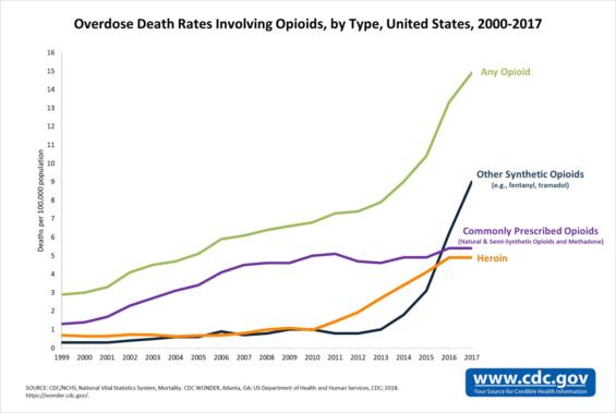 オピオイドによる死亡数タイプ別グラフ