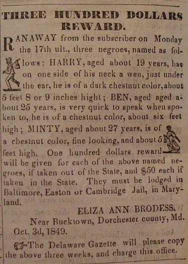 奴隷主による賞金広告